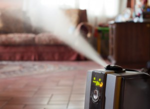 Indian River Humidifiers